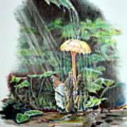 Fairy Shower Art Print