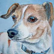 Beloved Dog Commission By Irina Sztukowski  Art Print