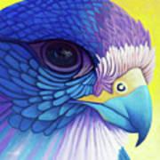 Falcon Medicine Art Print