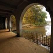Fall Arches Art Print