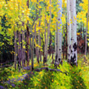 Fall Aspen Forest Art Print by Gary Kim