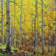 Fall Aspen Hill  Art Print