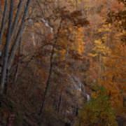 Fall At Amicalola Falls Art Print