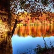 Fall At Lake Art Print