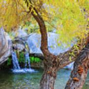Fall At Murray Falls I Art Print