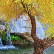 Fall At Murray Falls II Art Print