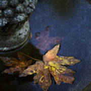 Fall At The Fountain Art Print