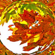 Fall Ball Art Print