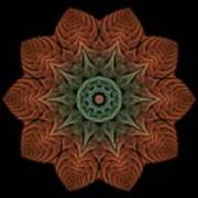 Fall Blossom Zxk-4310-2a Art Print