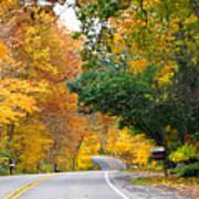 Fall Color Along Road  5643 Art Print