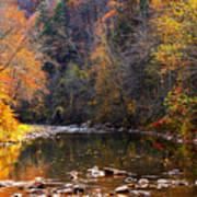 Fall Color Elk River Print by Thomas R Fletcher
