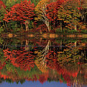 Fall Color Reflected In Thornton Lake Michigan Art Print