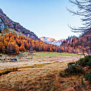 Fall Colors At Alpe Devero Art Print