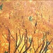 Fall Colors At Cape May Art Print