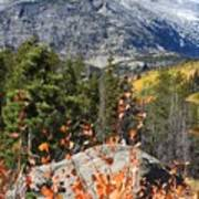 Fall Colors In Rocky Mountain National Park Art Print
