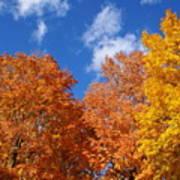 Fall Colors In Spokane Art Print
