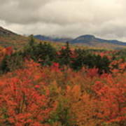 Fall Colors In White Mountains New Hampshire Art Print