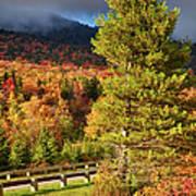 Fall Colors On Grandfather Mountain Art Print