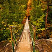 Fall Creek Falls Bridge Art Print