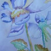 Fall Daisy Art Print