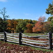 Fall Fence Art Print