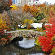 Fall Foliage In Central Park Art Print
