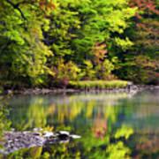 Fall Foliage Reflection Art Print