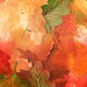 Fall Impressions V Art Print