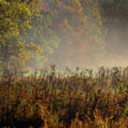 Fall In Cades Cove Art Print