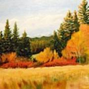 Fall In Chattaroy Art Print