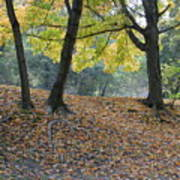 Fall In Stony Brook Art Print