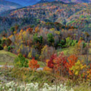 Fall In Tennessee Art Print