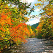 Fall In The Smokey Mountains  Art Print