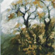 Fall In The Sumacs Art Print