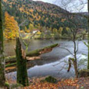 Fall In Vosges National Park Art Print