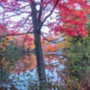 Fall Lagoon Art Print