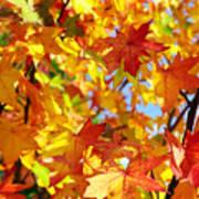 Fall Leaves Background Art Print by Carlos Caetano