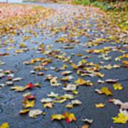 Fall Leaves Art Print by Michael Tesar