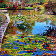 Fall Leaves On Lily Pond Art Print
