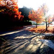 Fall Morning Art Print