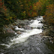 Fall Mountain Stream Art Print