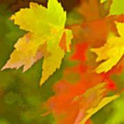 Fall Of Leaf Art Print