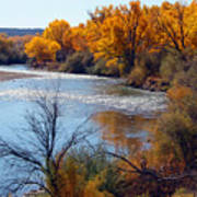 Fall On Animas River Art Print