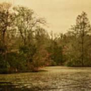Fall Pond Art Print