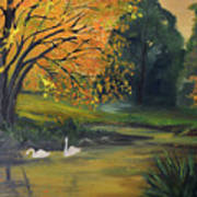 Fall Pond With Swans Art Print