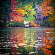 Fall Radiance Art Print