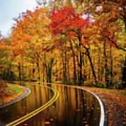 Fall Rain Art Print