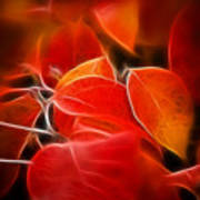 Fall Red 6675 Art Print