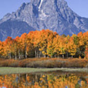 Fall Reflection At Oxbow Bend Art Print