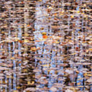 Fall Reflections #1277-4030 Art Print
